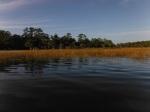Goose Creek Bay at Wakulla Beach