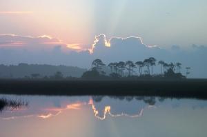 Dawn on a Big Bend Marsh